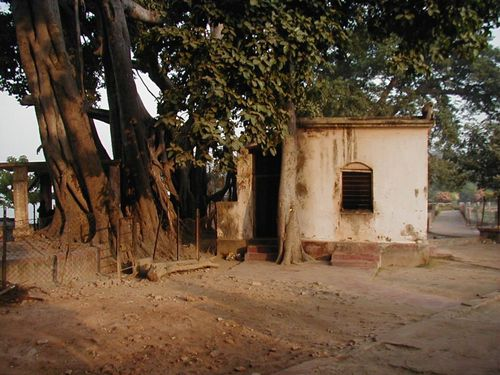 The Panchavati and the brick meditation hut built to replace the mud hut where Ramakrishna performed his advaitic sadhana