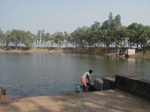 The Haldarpukur, the tank where Ramakrishna bathed and played as a child