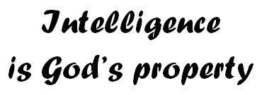Intelligence 3