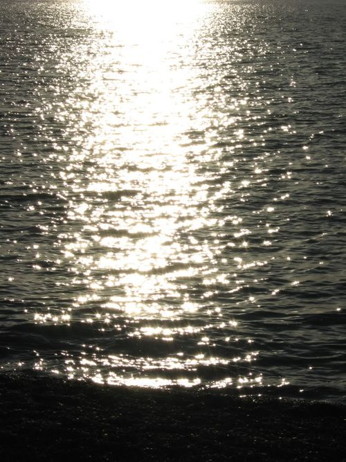 Sunlight off water