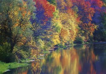 Beautiful_river